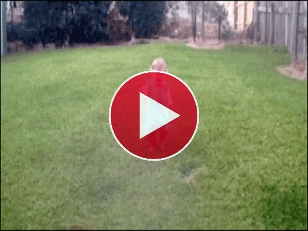 GIF: Perro tirando a la niña al suelo