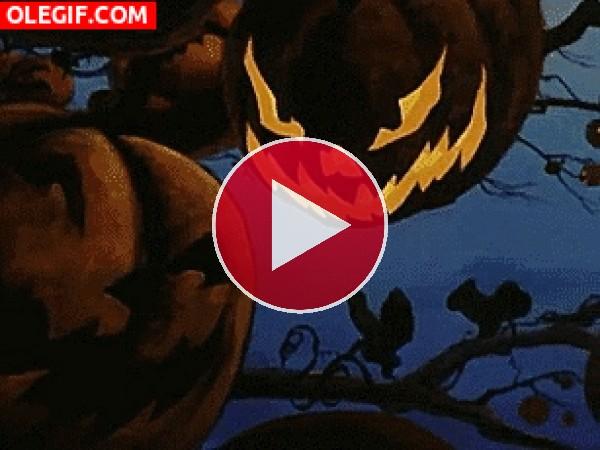 GIF: Terroríficas calabazas en la noche de Halloween