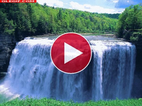 GIF: Una cascada en el río