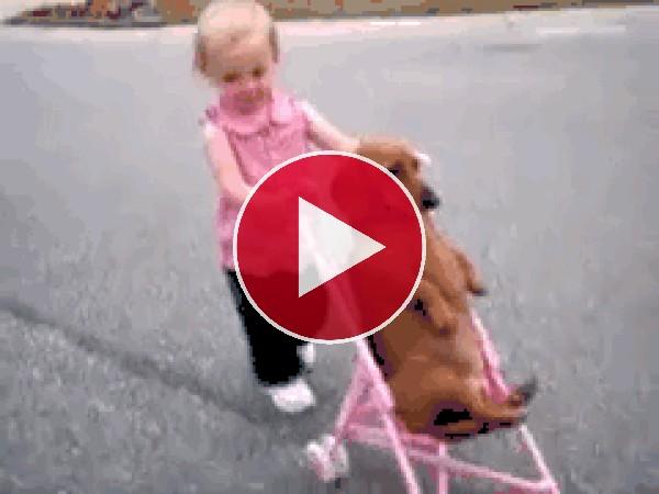 Mira a esta niña paseando al perro