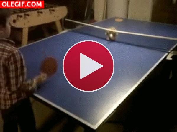 Jugando al ping pong con mi gato