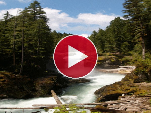 GIF: Un río caudaloso