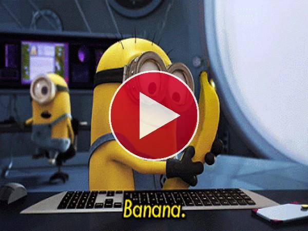 GIF: A este Minion le gustan las bananas