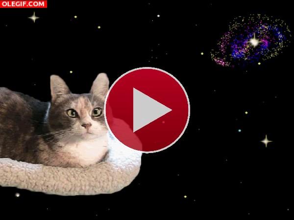 Un gato viajando por el espacio