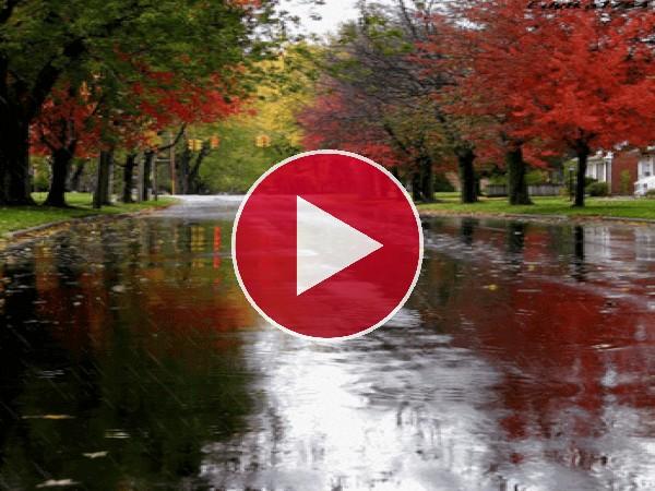 GIF: Llueve en otoño