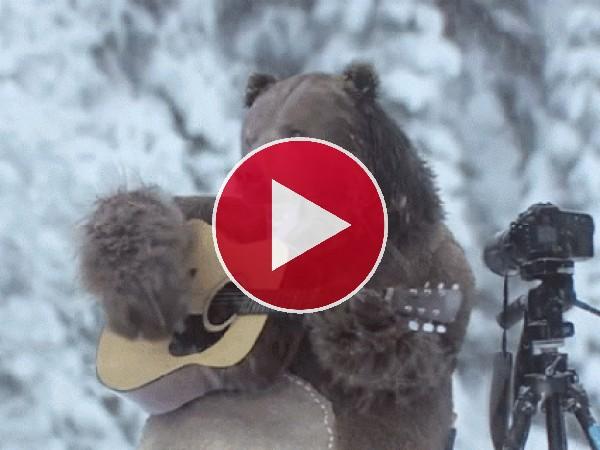 A este oso le gusta cantar y tocar la guitarra bajo la nieve