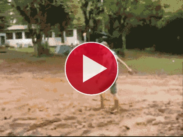 GIF: Sorpresa en el lodo