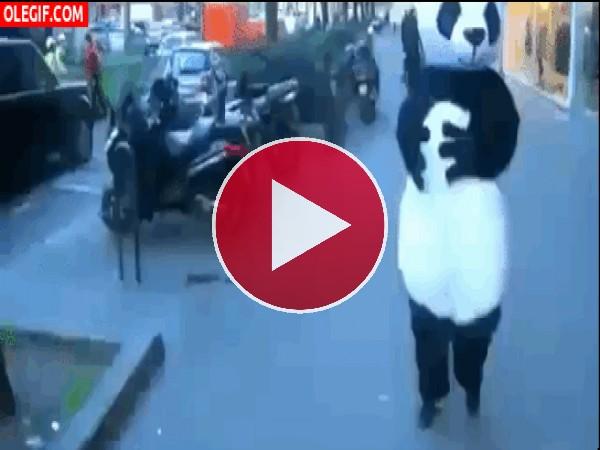 GIF: La maldición del panda