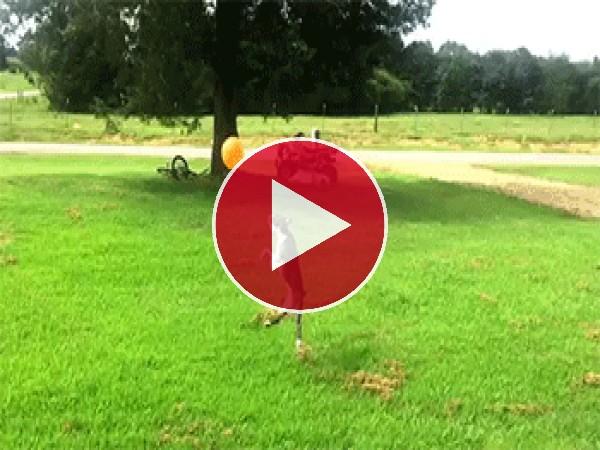 GIF: A este perro le gusta jugar con el globo