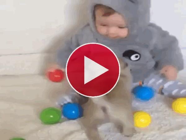 Bebé jugando con el cachorro
