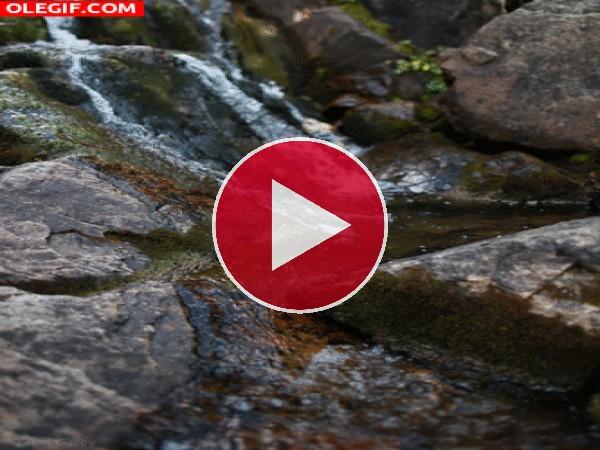 GIF: Riachuelo fluyendo entre las rocas