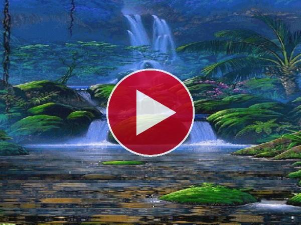 GIF: Hermosa cascada