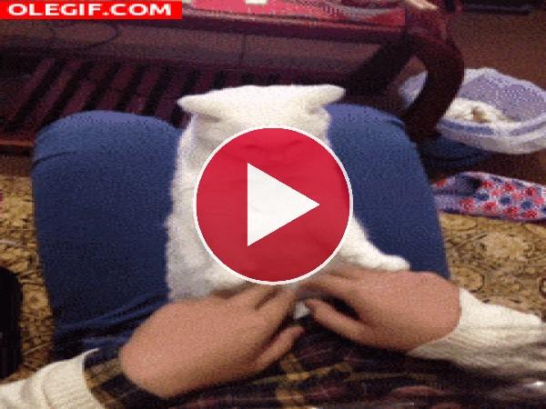 Este gato es un gran imitador
