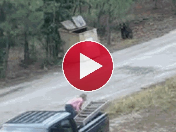 GIF: Mira cómo salvan a los osos de un contenedor de basura