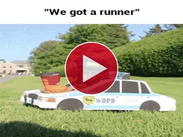 Un perro policia