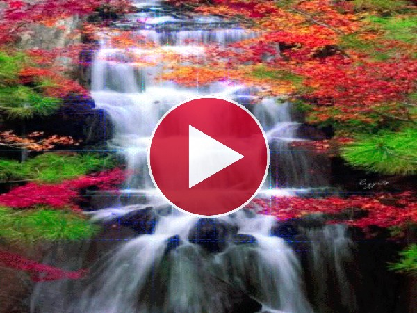 Una hermosa cascada