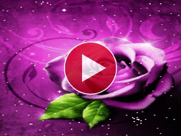 GIF: Bonitas rosas
