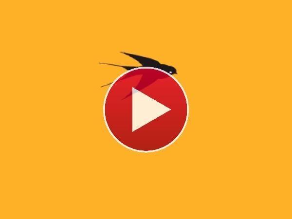 El vuelo de la golondrina