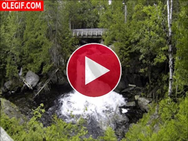 GIF: Río cayendo en cascada