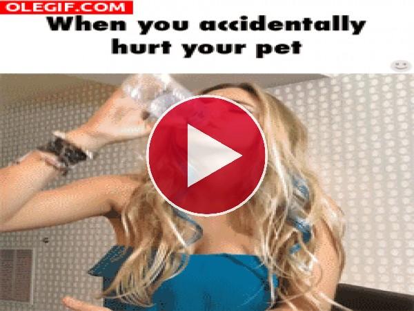 Botellazo al perro