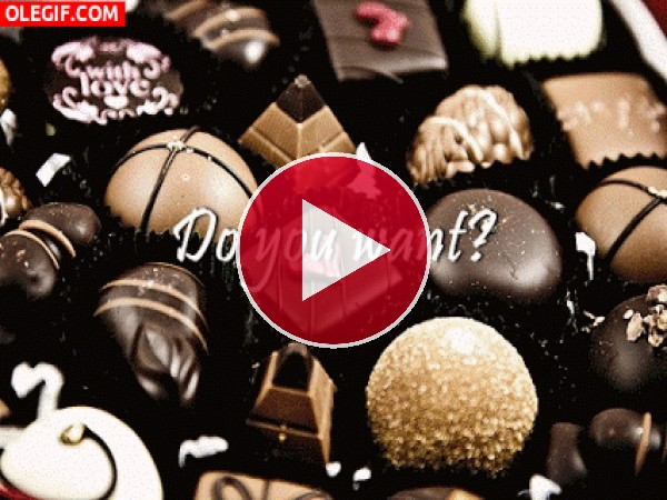 GIF: ¿Quieres chocolate?