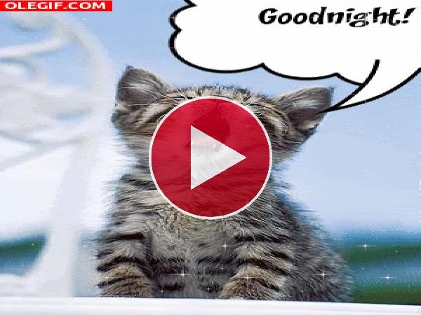 GIF: ¡Buenas noches!