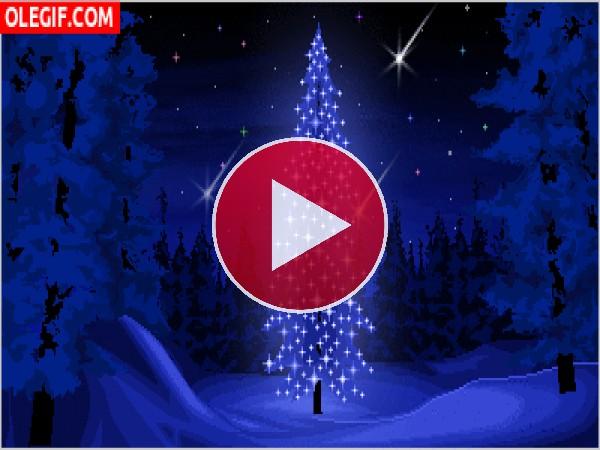 GIF: Un bonito árbol de Navidad luciendo en la noche