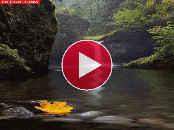 Cascada fluyendo en otoño