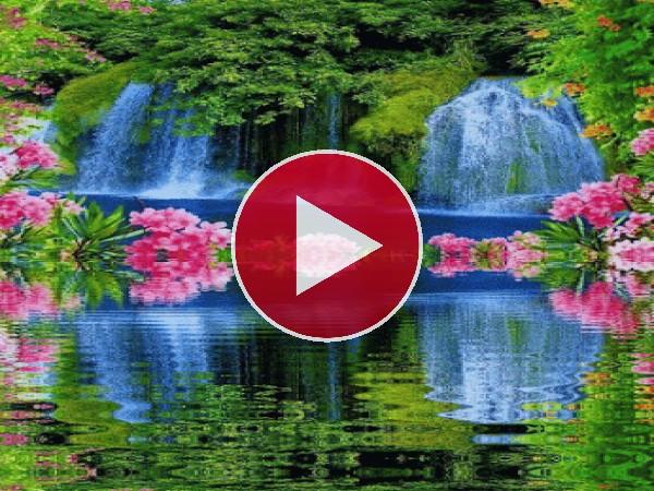 Flores junto a la cascada