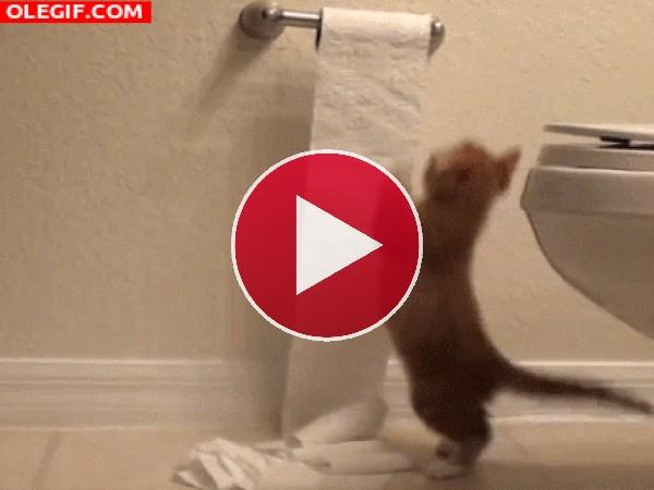 GIF: Debo acabar con el papel higiénico