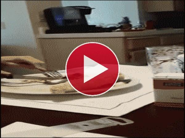 ¡Dame algo de comer!