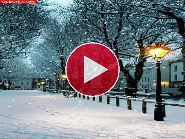 Nieva en el parque