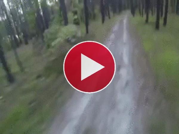 A este ciclista le persigue un oso