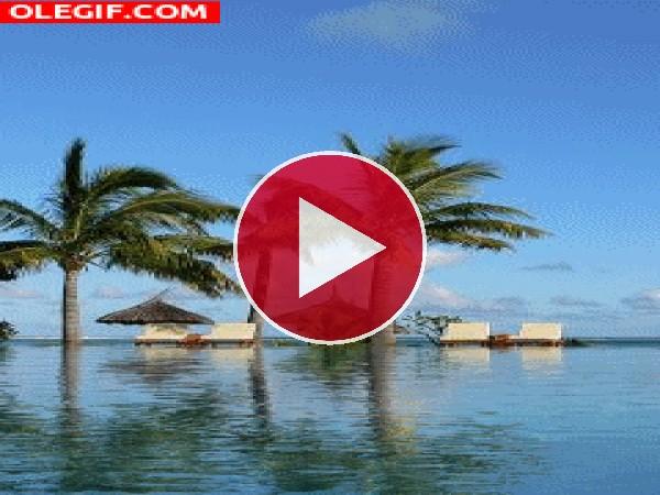 GIF: Un lugar para el relax