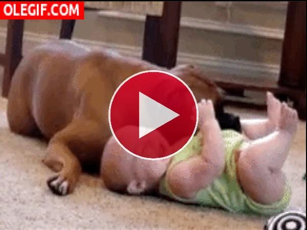 Este bebé es feliz con el perro