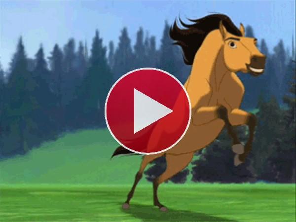 GIF: Águila volando junto al caballo