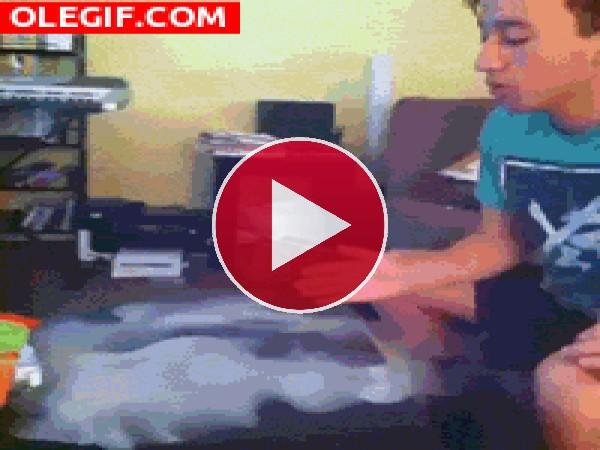 GIF: La magia de comer espaguetis