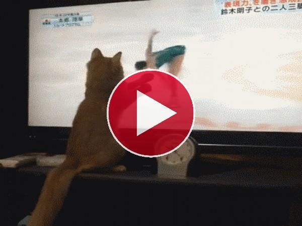 GIF: Me gusta el patinaje artístico