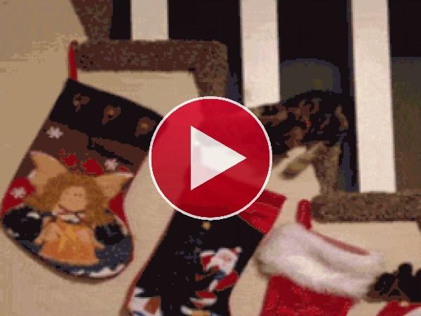GIF: Veré si me dejó algún regalo Santa Claus