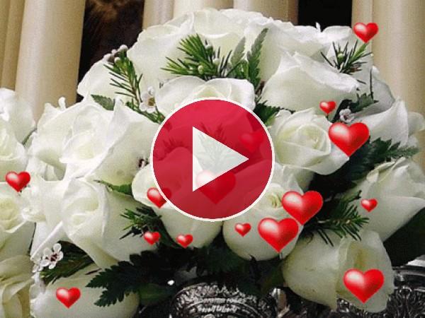 GIF: Rosas para el Día de San Valentín