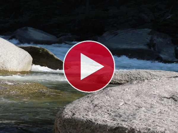 GIF: Río fluyendo entre las rocas