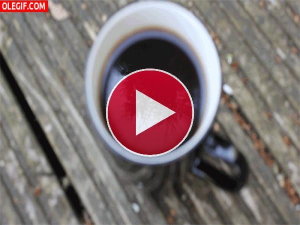 Tomando café al aire libre