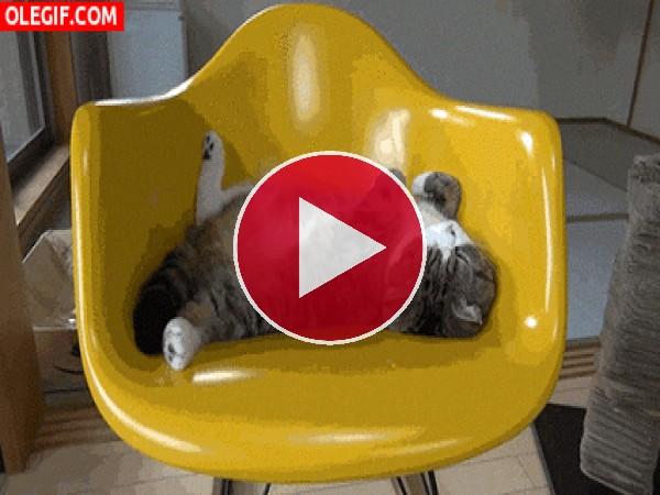 GIF: Pues se duerme bien en esta silla