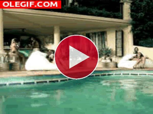 GIF: ¡Al agua!
