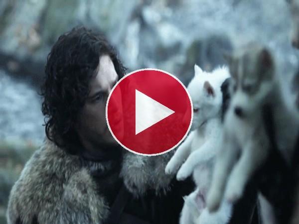 Jon Nieve con un lobezno