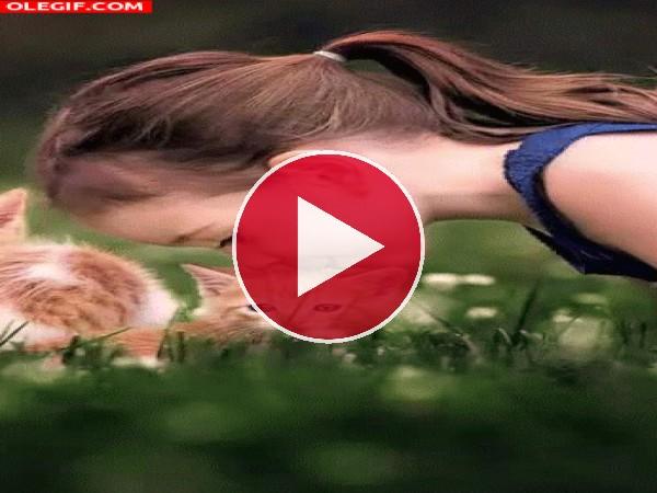 GIF: Jugando con mi gatito