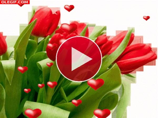 GIF: Corazones y tulipanes para el Día del Amor