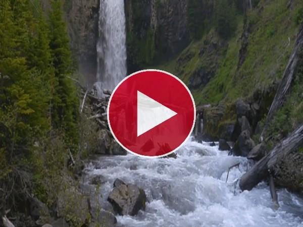 Cascada y río fluyendo