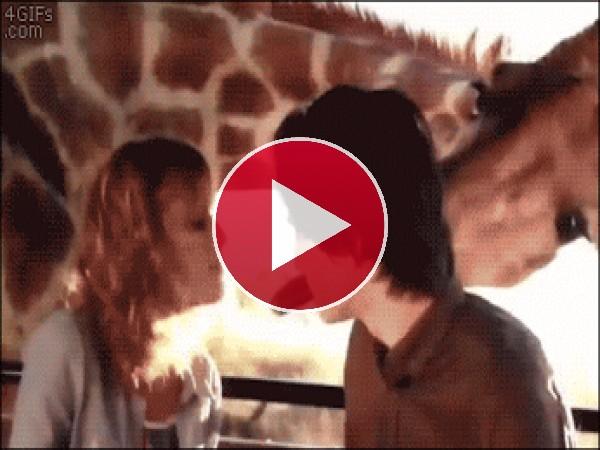 ¡Toma beso con lengua!