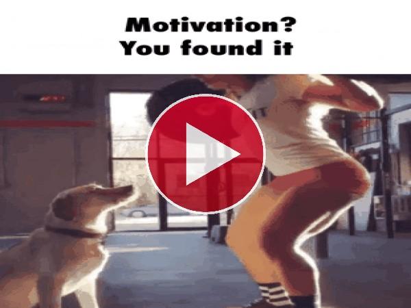 Encontró la motivación